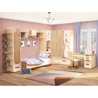 Комплект детской мебели Фристайл (композиция 5)