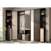 Комплект мебели для прихожей Домино