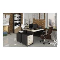 Набор офисной мебели для руководителя ГН-184.006 Успех-2