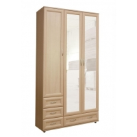Универсальный шкаф прихожая №161