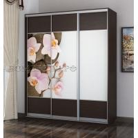 Шкаф-купе Честер 1800 Орхидея