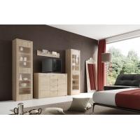 Комплект мебели для гостиной Элана-1 (дуб сонома)