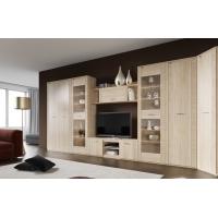 Комплект мебели для гостиной Элана-2 (дуб сонома)